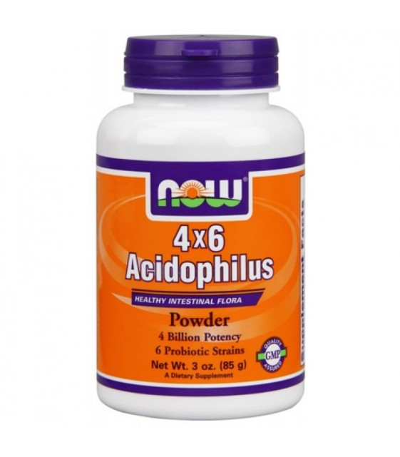 Acidophilus - ProBiotic 4 x 6, Ацидофилус 60 кап. NOW