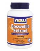 Boswellia Extract Босвеллия, 120 капс NOW