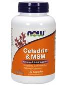Celadrin с MSM Целадрин с МСМ 500 мг 120 кап. NOW